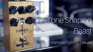 A Tone Shaping Beast | Wampler Tumnus Deluxe