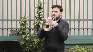 Festa della Musica - Giardino d'Alessandro | Gallerie d'Italia