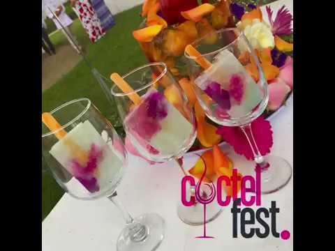 Coctel Fest