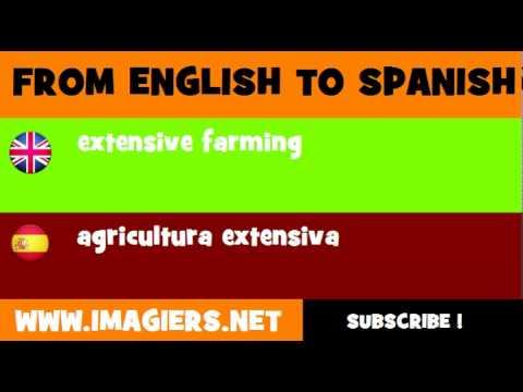 ESPAÑOL = INGLÉS = agricultura extensiva