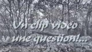 Clip védéo Randonnées Ariège Pyrénées(3) clip question!...