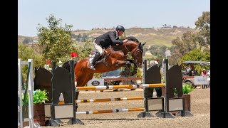 Diamanté Fino's clear round placing 7th with Max Doelger st Nilforushan Events