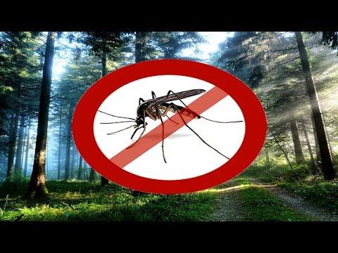 Самодельное средство от комаров - Дымовая Шашка