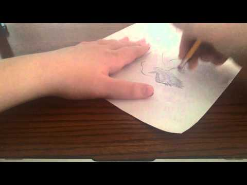 How to draw a feathered dinosaur