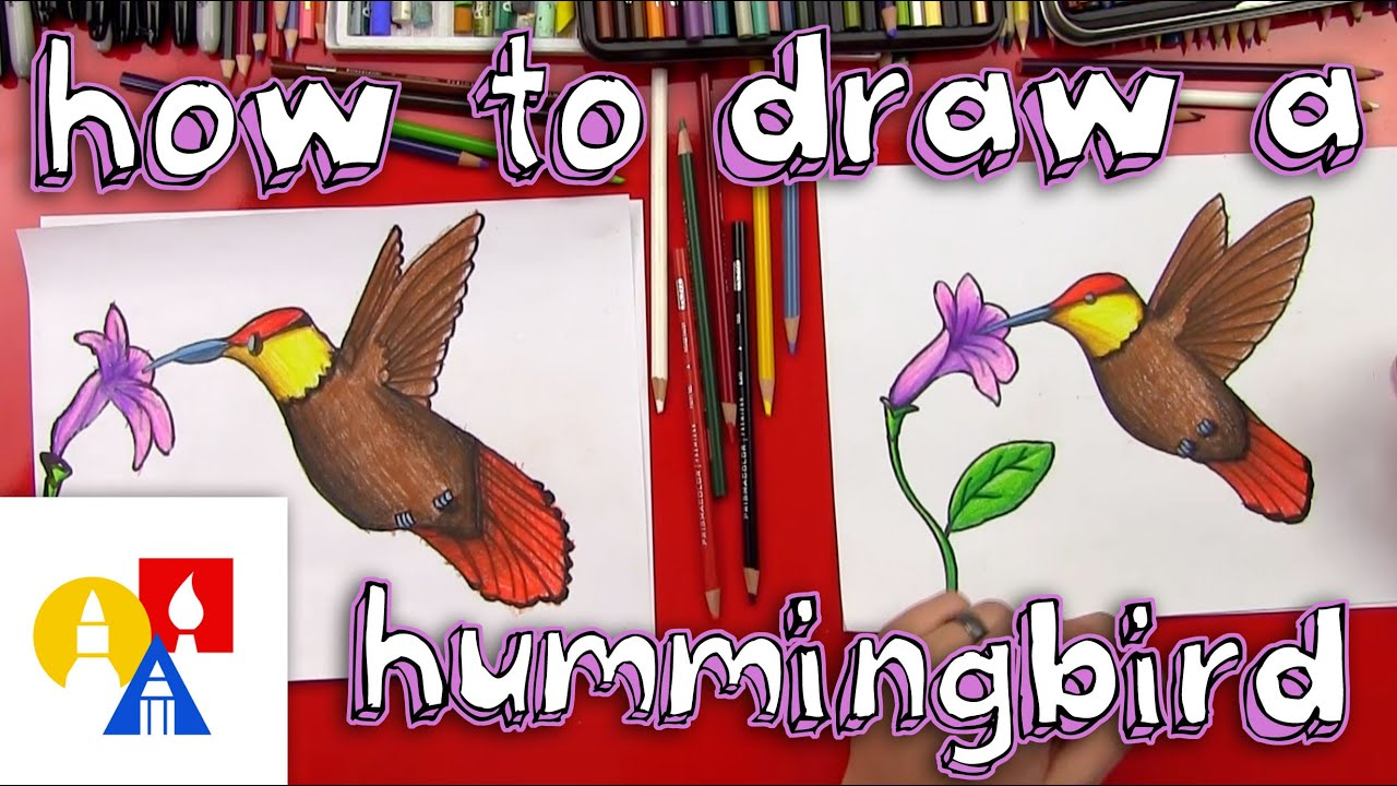 Uncategorized How To Draw Videos For Kids how to draw a hummingbird youtube