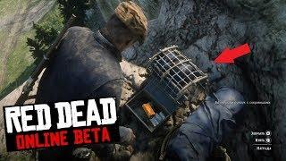 Red Dead Online - Карта сокровищ Бардс Кроссинг