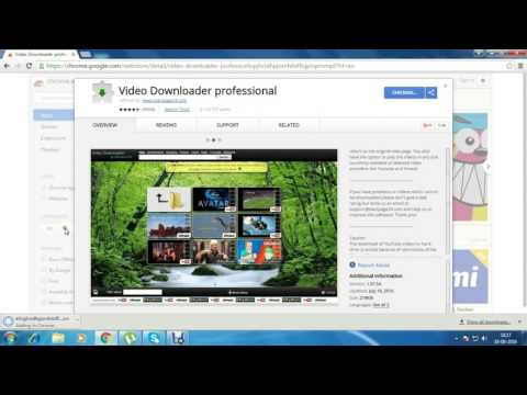 best chrome video downloader, Video Downloader professional