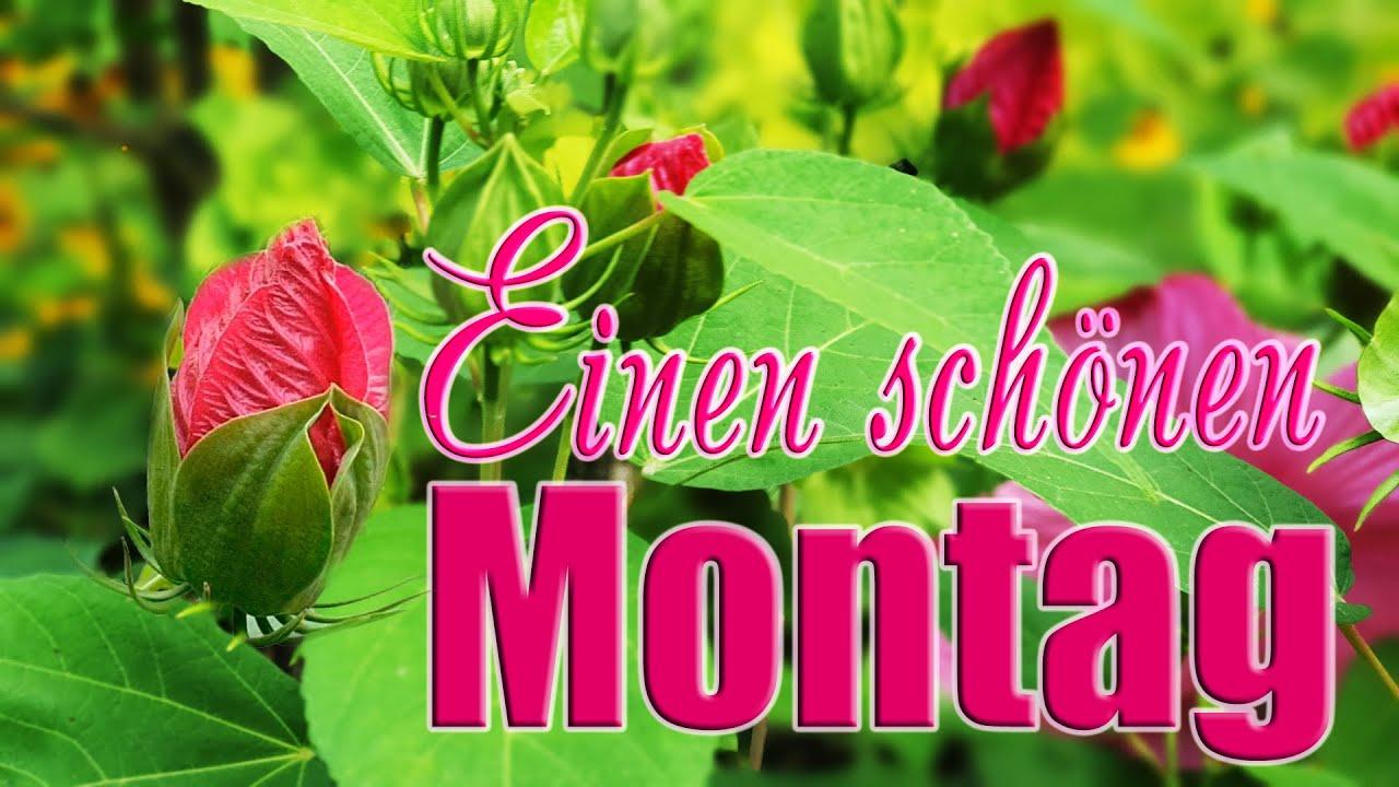 Guten Morgen Einen Schönen Montag Wünsche Ich Dir Liebe Grüße Für Dich