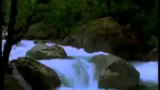 Фильм 'Энергия Денег' смотреть онлайн