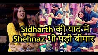 Shehnaz Gill missing Sidharth Shukla, fallen sick   Sidnaaz   Bigg Boss 13