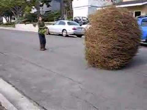 Two Girls, Three Giant Tumbleweeds