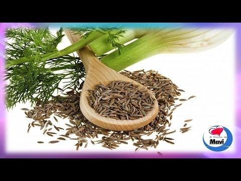 hinojo-propiedades-curativas,-beneficios-y-usos-medicinales-del-hinojo