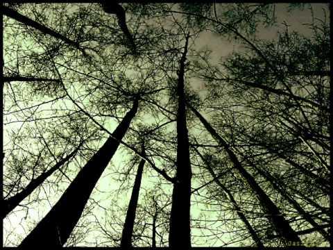 John Askew - The Witch (Original Mix)
