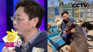 幸福账单 10年救助4000余只流浪狗 却因忽略家人导致妻子离开 20190625 CCTV综艺
