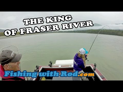 The King of Fraser River   Fishing with Rod