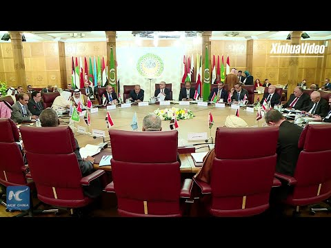"""Arab League chief says Turkey's operation in Syria """"military invasion"""""""