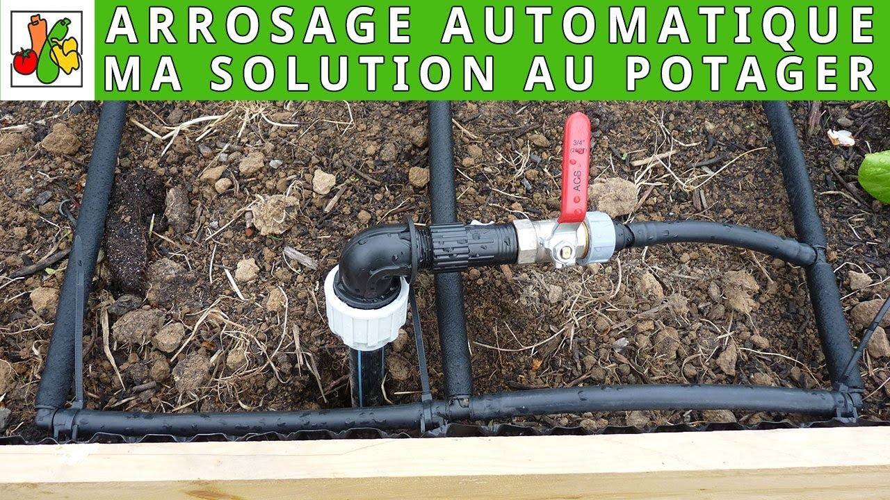 Systeme Arrosage Automatique Potager solution d'arrosage automatique au potager