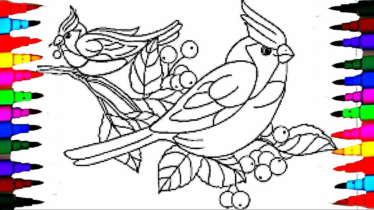 learn to color birds coloring pages videos for children learn colors - Bird Coloring Book