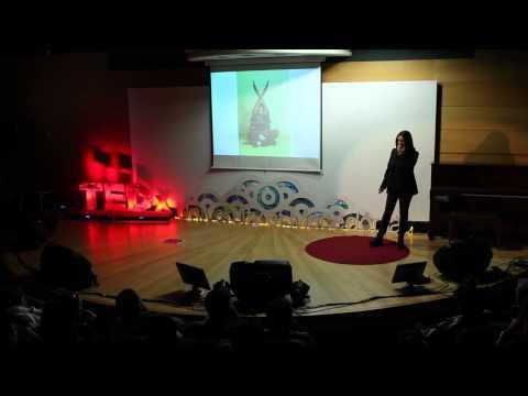 Μπορούμε να γίνουμε αυτό που ονειρευόμαστε ; | Katerina Bakogianni | TEDxUniversityofMacedonia