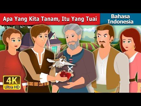 Apa Yang Kita Tanam, Itu Yang Tuai | What We Plant We Eat Story | Dongeng Bahasa Indonesia