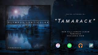 Olympus Lenticular - 'Tamarack' - Full Album Stream (Instrumental Djent)