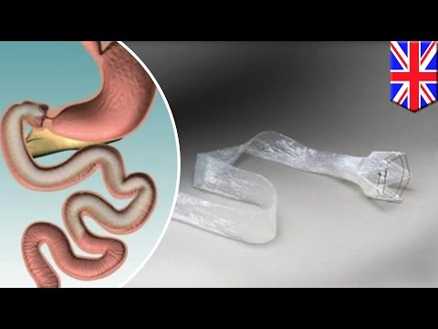 artificial-intestine-can-trick-the-brain-into-thinking-it's-digesting-when-it's-not