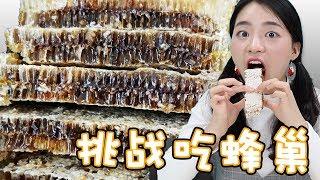 蜂巢竟然可以吃? !看妮妮挑戰吃蜂巢!| 伶可兄弟
