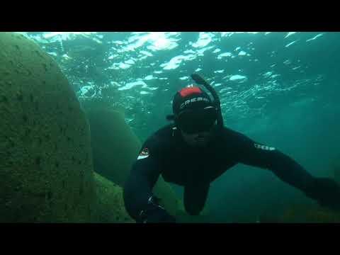 Snorkeling Douglas Lighthouse April 2018