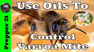 How To Use Essential Oils For Mite Control