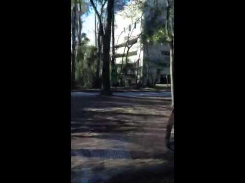 Interwood/Trammell Crow Site