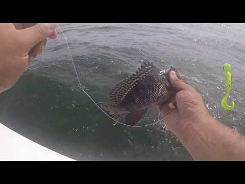 BROOKLYN REEF FISHING | BROOKLYN CHARTER BOAT | THE HUNTER | IRONGIANTFISHING