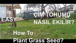 ÇİM TOHUMU NASIL EKİLİR? / HOW TO PLANT GRASS SEEDS? EASY