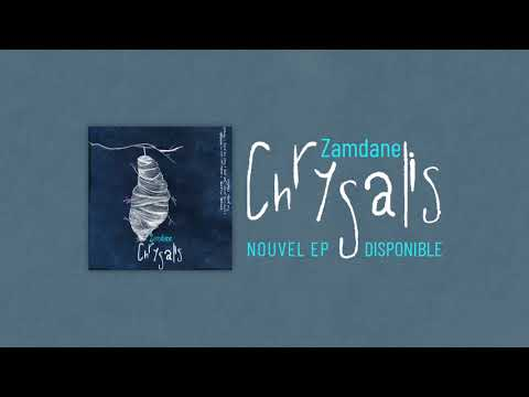 Youtube: Zamdane – Salopard [Audio Officiel]