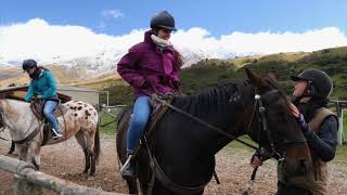 Best Tour to do on a day trip from Queenstown or Wanaka