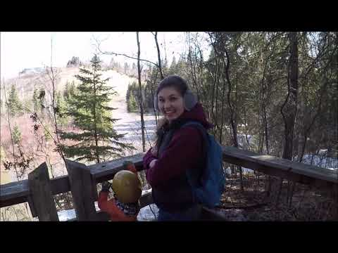 В лес на велосипедах. Эдмонтон .Канада.