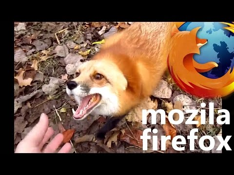 Baixar firefox real - Download firefox real | DL Músicas