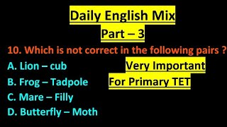 Daily English Mix part -3 Content for primary TET