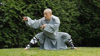 Shaolin Martial arts display