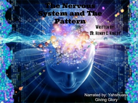 The Nervous system and The Pattern (Dr. Henry C. Kinley)