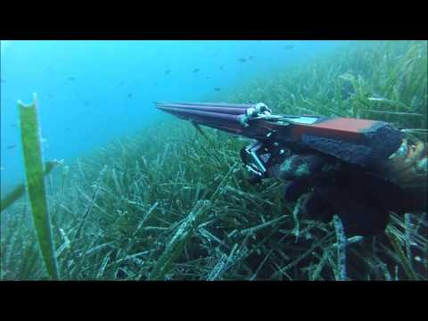Spearfishing in ionian sea - part 2
