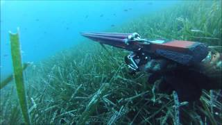 Repeat youtube video Spearfishing in ionian sea - part 2