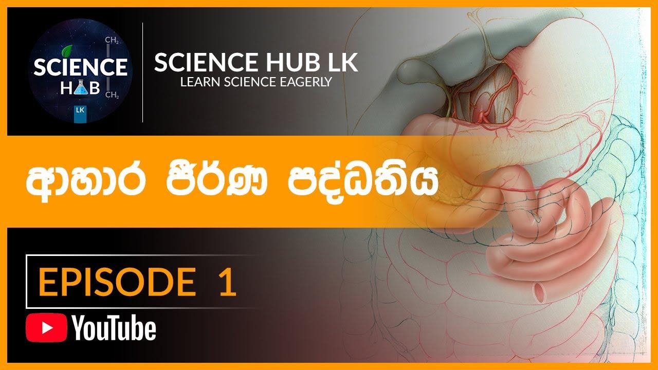 O/L Science Sinhala   ආහාර ජීරණ පද්ධතිය   Human Digestive ...