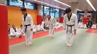 Poomsae Superior Sipjin ( Escuela Taekwondo Park Madrid 👊 )