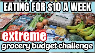 HOW TO EAT FOR $10 A WEEK | EMERGENCY EXTREME BUDGET GROCERY HAUL 2020