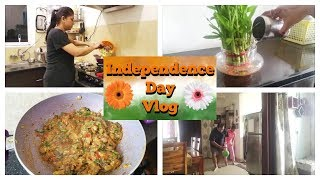 Independence Day Vlog in Hindi : New Game In Our Home | Indian Mom Studio