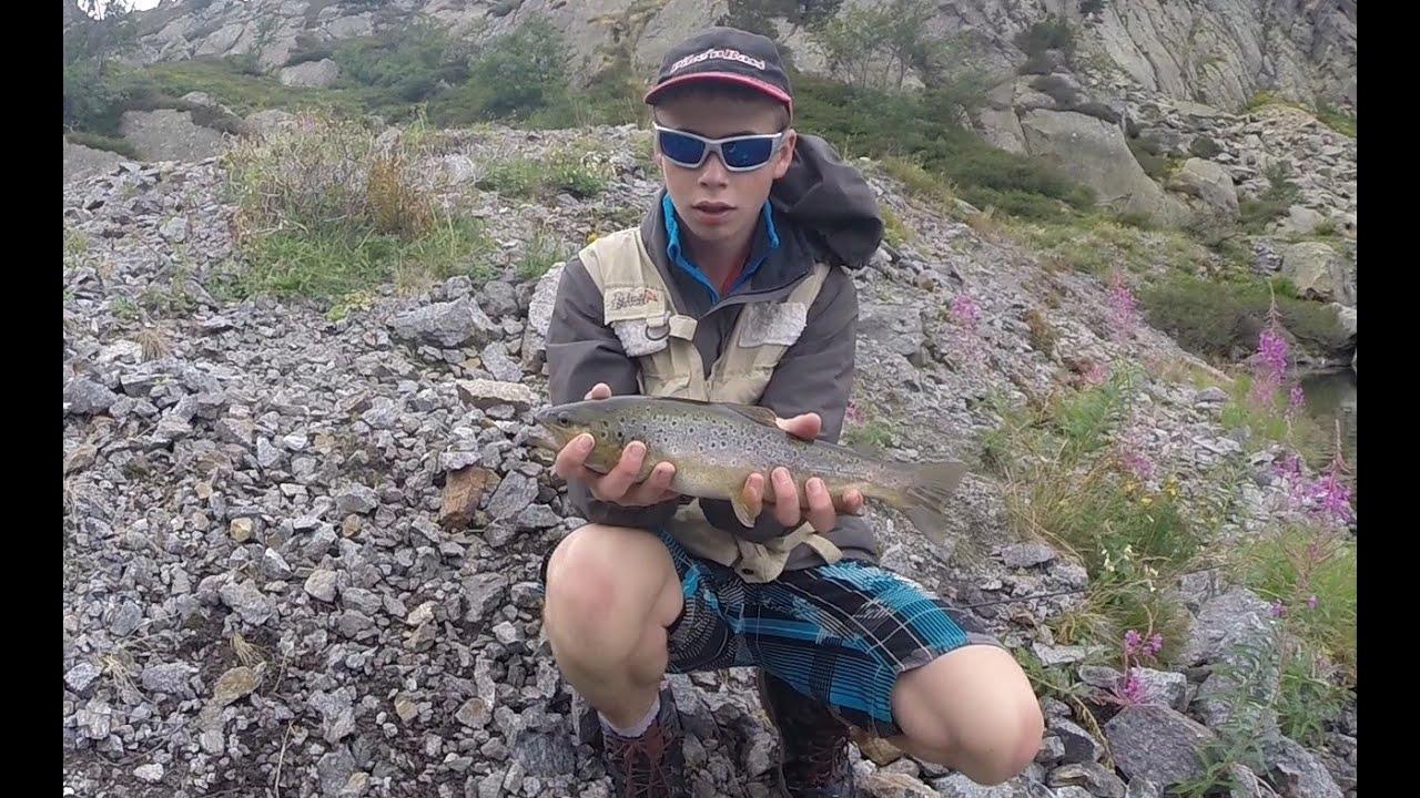 Les rapports sur la pêche payante à podmoskove