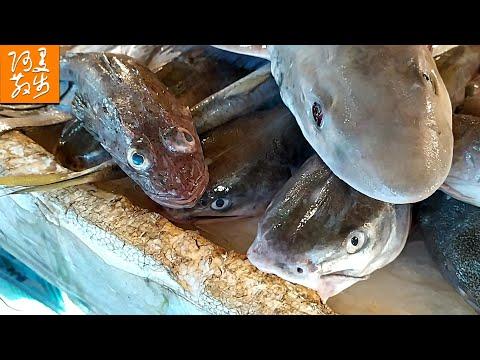 Street Seafood Market   Fish Market    Fresh Fish【Aman Walker】