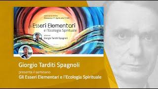 SEMINARIO ONLINE: Gli Esseri Elementari e l'Ecologia Spirituale - Giorgio Tarditi Spagnoli