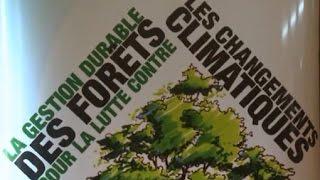 Côte d'Ivoire - Les Nouvelles Techniques Agricoles pour préserver la forêt