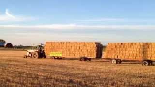 IHC 1206 Tractor Pulling 20 Loaded Hay Racks - Chuck Timm